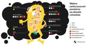 Przyczyny i skutki zanieczyszczenia powietrza