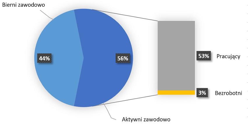 Aktywność ekonomiczna ludności w III kwartale 2016 r.