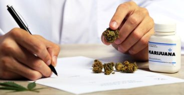 Medyczna marihuana. Czy dostęp do niej powinien być w Polsce poszerzony?