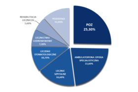 Struktura skarg dotyczących systemu opieki zdrowotnej w I kwartale 2013 roku.
