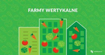 Farmy wertykalne. Czy rolnictwo ma szansę przenieść się do miast?