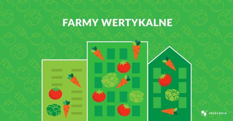 Farmy wertykalne - czym są i jakie są ich perspektywy rozwoju