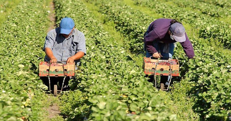 Nowe zasady zatrudniania cudzoziemców.